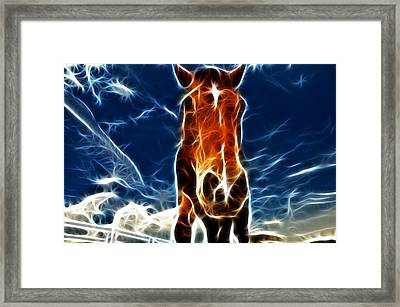 The Horse Framed Print by Paul Ward