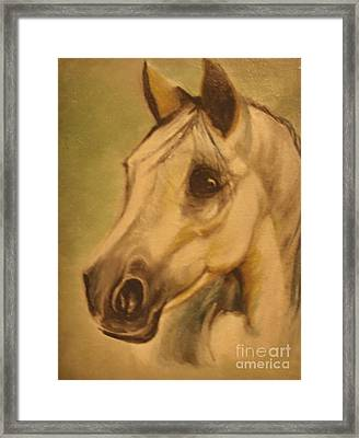 Framed Print featuring the painting The Horse by Sorin Apostolescu