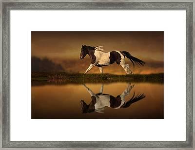 The Horse's Journey Framed Print by Jennifer Woodward