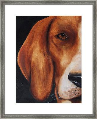 The Hound Framed Print
