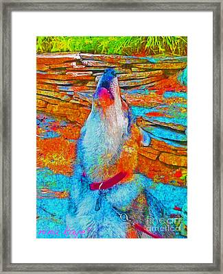 The Howling # 4338 Framed Print by Nina Kaye