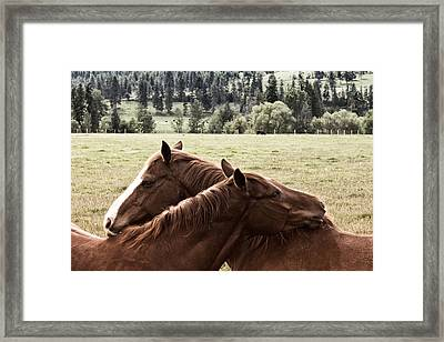 The Hug Framed Print