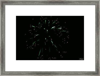 The Hulk Fw Framed Print by Teresa Blanton