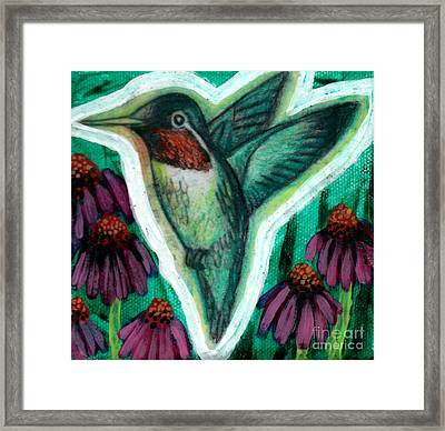 The Hummingbird 2 Framed Print by Genevieve Esson
