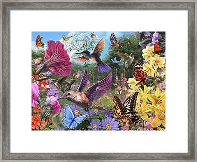 The Hummingbird Garden Framed Print by Steve Read