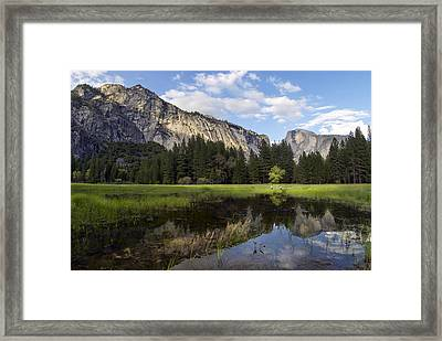 The Hunt Framed Print by Sean Foster