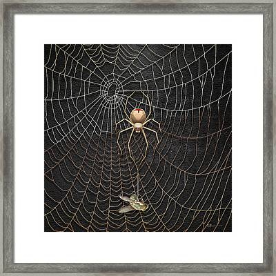 The Hunter And Its Pray - A Gold Fly Caught By A Gold Spider Framed Print by Serge Averbukh