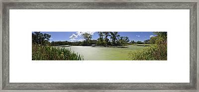 The Indiana Wetlands Framed Print