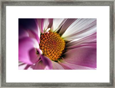 The Inner Soul Framed Print by Wanda Brandon