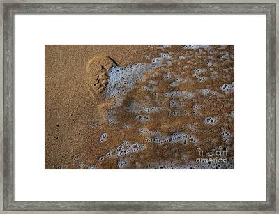 The Invisible Life Framed Print