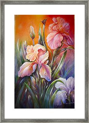 The Iris Of  Spring  Framed Print by Patricia Schneider Mitchell