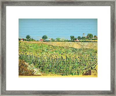 The Irises Of Macpherson Framed Print by Belinda Low