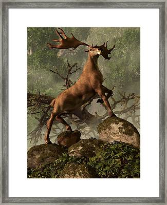 The Irish Elk Framed Print by Daniel Eskridge