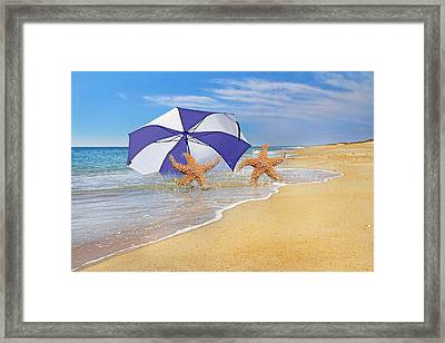 The Island To Ourselves  Framed Print