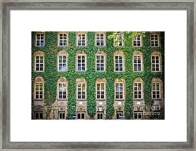 The Ivy Walls Framed Print