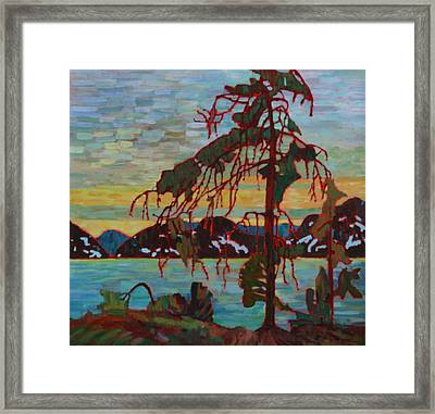 The Jack Pine After Tom Thomson Framed Print by Betty-Anne McDonald