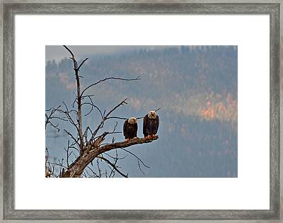 The Joke  Framed Print by Annie Pflueger