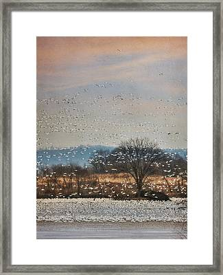 The Journey Begins Framed Print by Lori Deiter