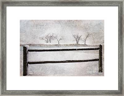 The Joy Of Snow Framed Print by Betty LaRue