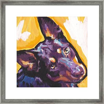 The Kelpie Kutie Framed Print by Lea S