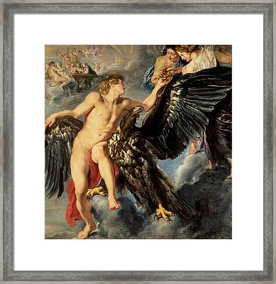 The Kidnapping Of Ganymede Framed Print by Rubens