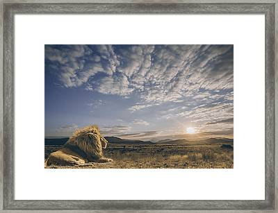 The King And His Kingdom Framed Print