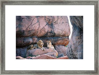 The King And Queen Framed Print