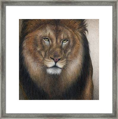 The King Grows Weary  Framed Print by Pat Erickson