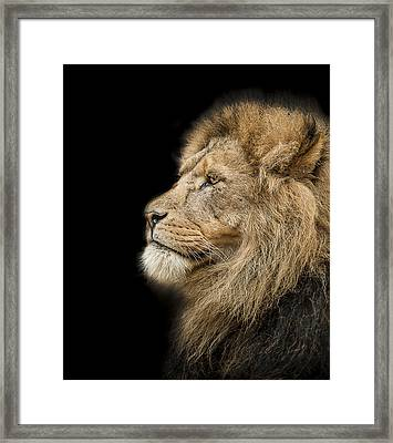 The King Is Dead Long Live The King Framed Print