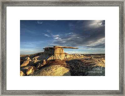 The King Of Wings Framed Print by Bob Christopher