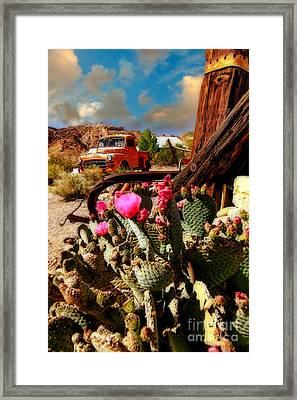 The Kings Ride Framed Print by Brenda Giasson