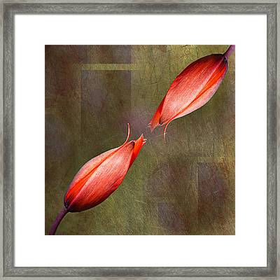The Kiss Framed Print by Claudia Moeckel