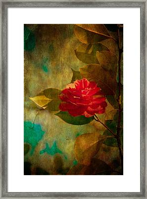 The Lady Of The Camellias Framed Print