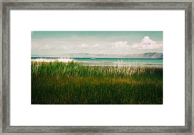 The Lake - Digital Oil Framed Print by Mary Machare