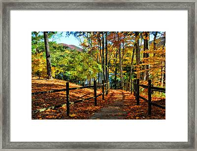 Framed Print featuring the photograph The Lake Path by Kenny Francis