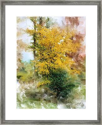 The Lake Trees Framed Print