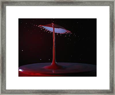 The Lamp Framed Print