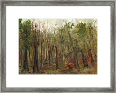 The Land Between II Framed Print by David Dossett