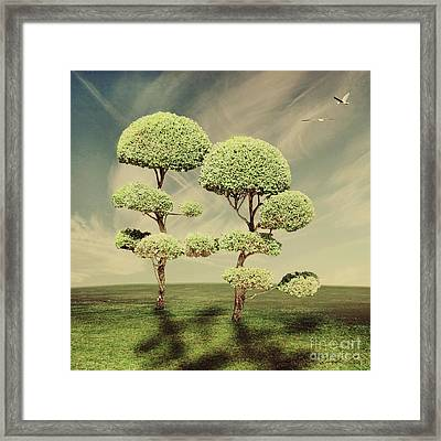 The Land Of The Lollipop Trees Framed Print by Linda Lees