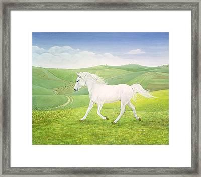The Landscape Horse Framed Print by Ditz