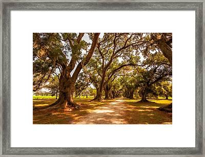 The Lane 2 Framed Print by Steve Harrington