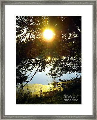 The Last Dance Framed Print by Robyn King