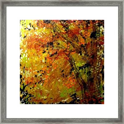The Last Days Of Autumn Framed Print by Cheryl Lynn Looker
