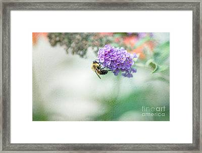The Last Drop Framed Print by Rebecca Cozart