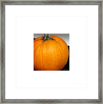 The Last Gift From The Autumn. Holiday Collection 2015 Framed Print
