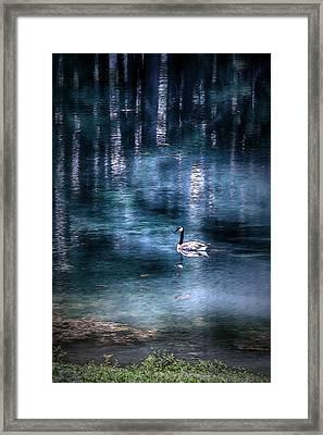 The Last Goose Framed Print