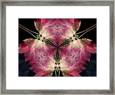 The Last Leaf Framed Print by Diane Carlson
