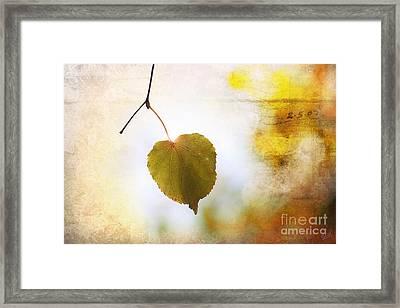 The Last Leaf Framed Print by Nishanth Gopinathan