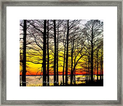 The Last Light Framed Print by Bruce A Lee