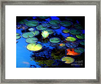 The Last Lily Framed Print